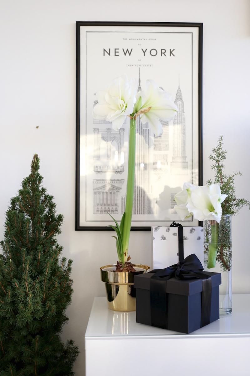 Homevialaura, joulu, joulukuusi, amaryllis, Zarro, Skultuna, messinkinen ruukku