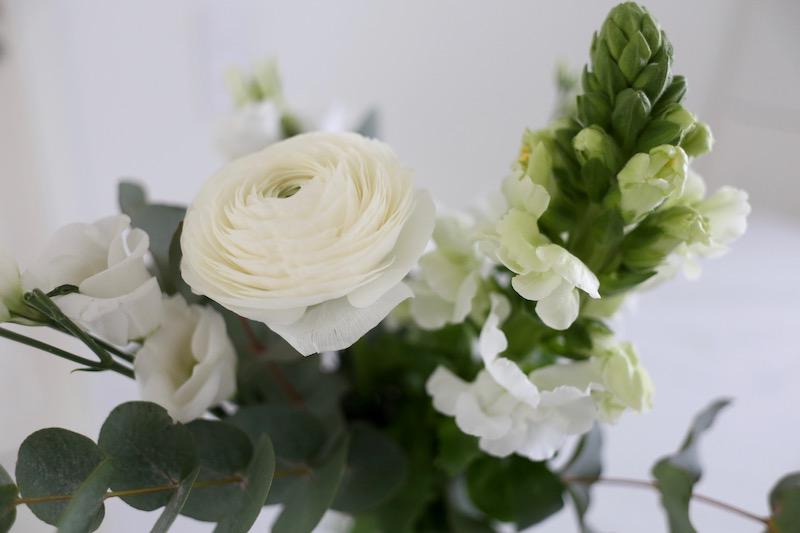 Homevialaura, Madara 24h Sale -40 %, luonnonkosmetiikka