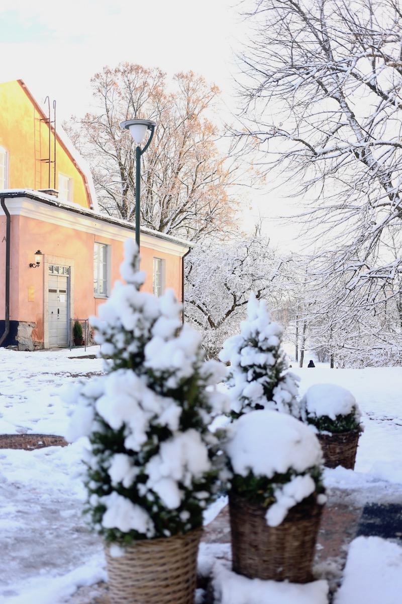 Homevialaura, Tuomarinkartano, Helsinki