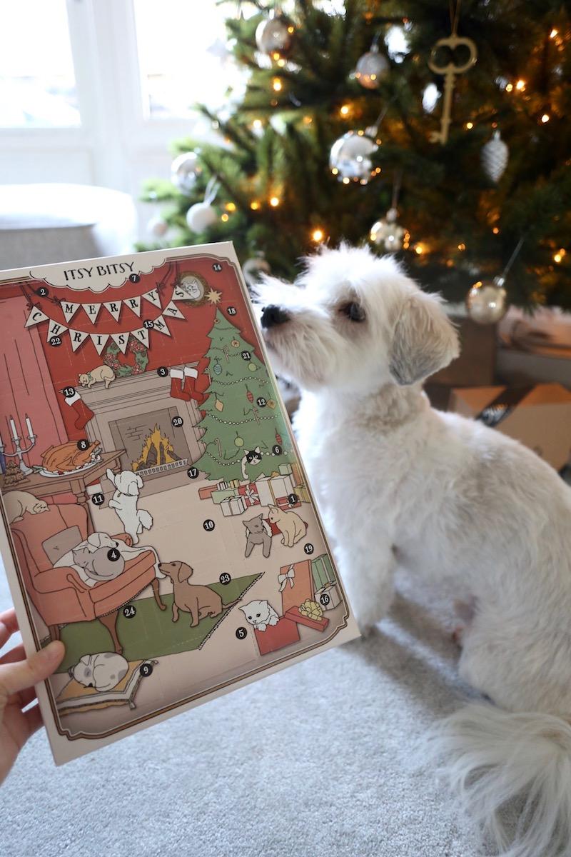 Homevialaura, joulu, koiran joulukalenteri