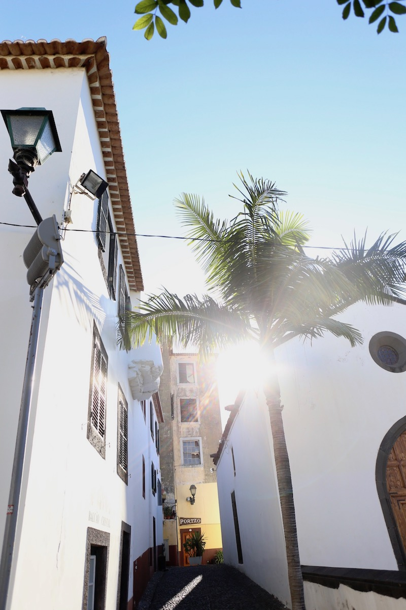 Madeira ja miten sen koin