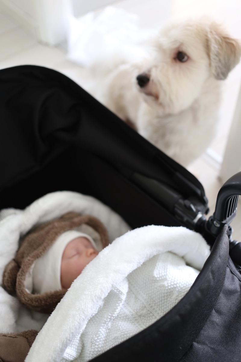 Homevialaura, vauvan tarvikkeet, Baby's Only, lämpöpussi