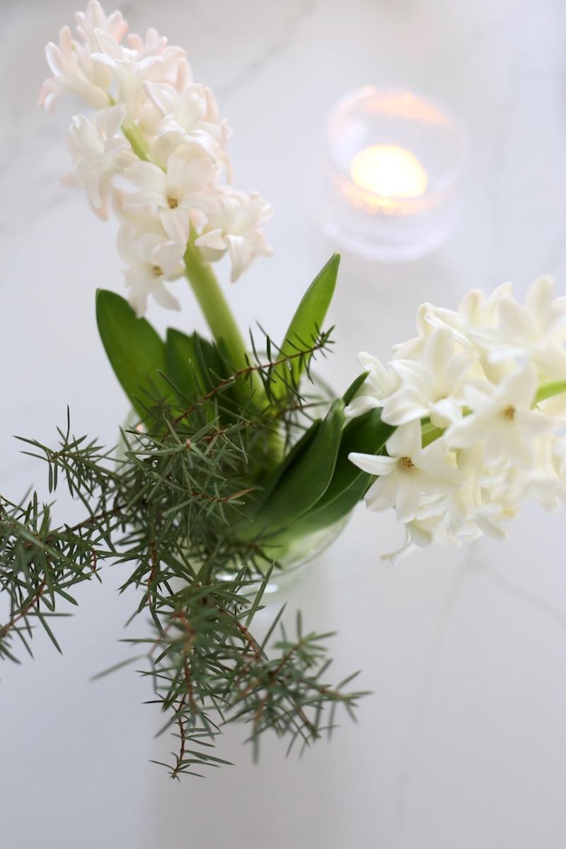 Homevialaura, valkoiset joulukukat, hyasintti, havut