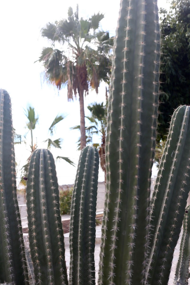 Homevialaura, Gran Canaria, Kanariansaaret
