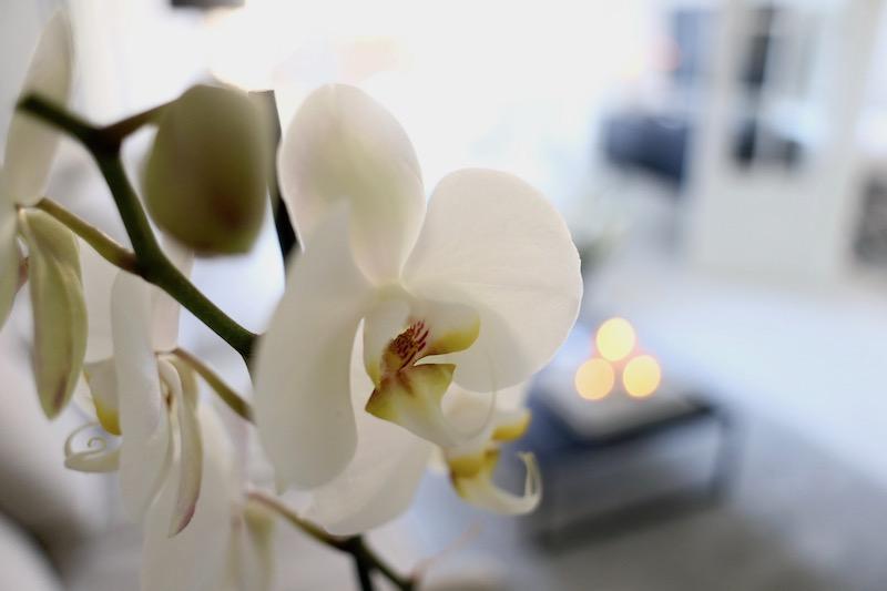 Homevialaura, IKEA, iltarutiinit, iltarauhoittuminen