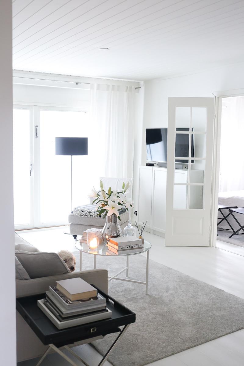 Homevialaura, olohuone, oviremontti, lasiovet, ranskalaiset pariovet