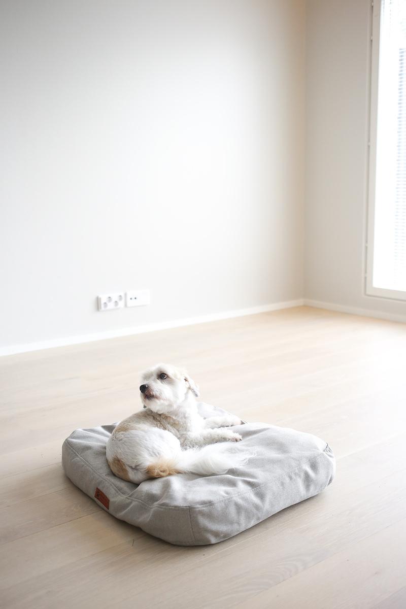 Homevialaura, koiran peti, koiran sänky, Koirantassu.fi, Tessu-lepopatja