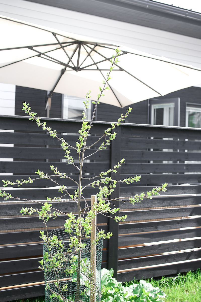 Homevialaura, piha, terassi, Ecopots, ruukku, Kekkilän koristekivet