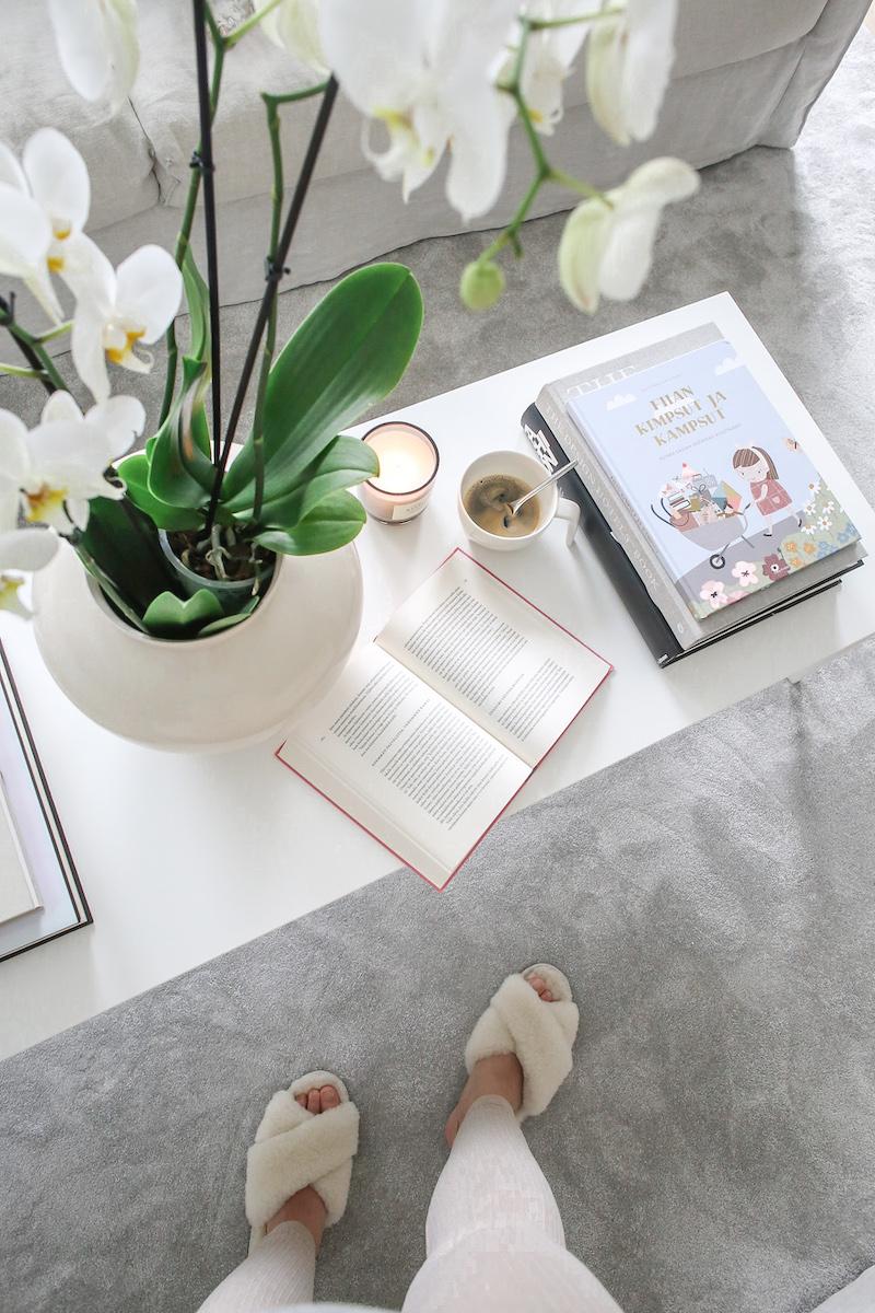 Homevialaura, Julia Thuren, Kaikki Kuluttamisesta, Fiian kimpsut ja kampsut –kuinka kasvaa kestäväksi kuluttajaksi, lastenkirja
